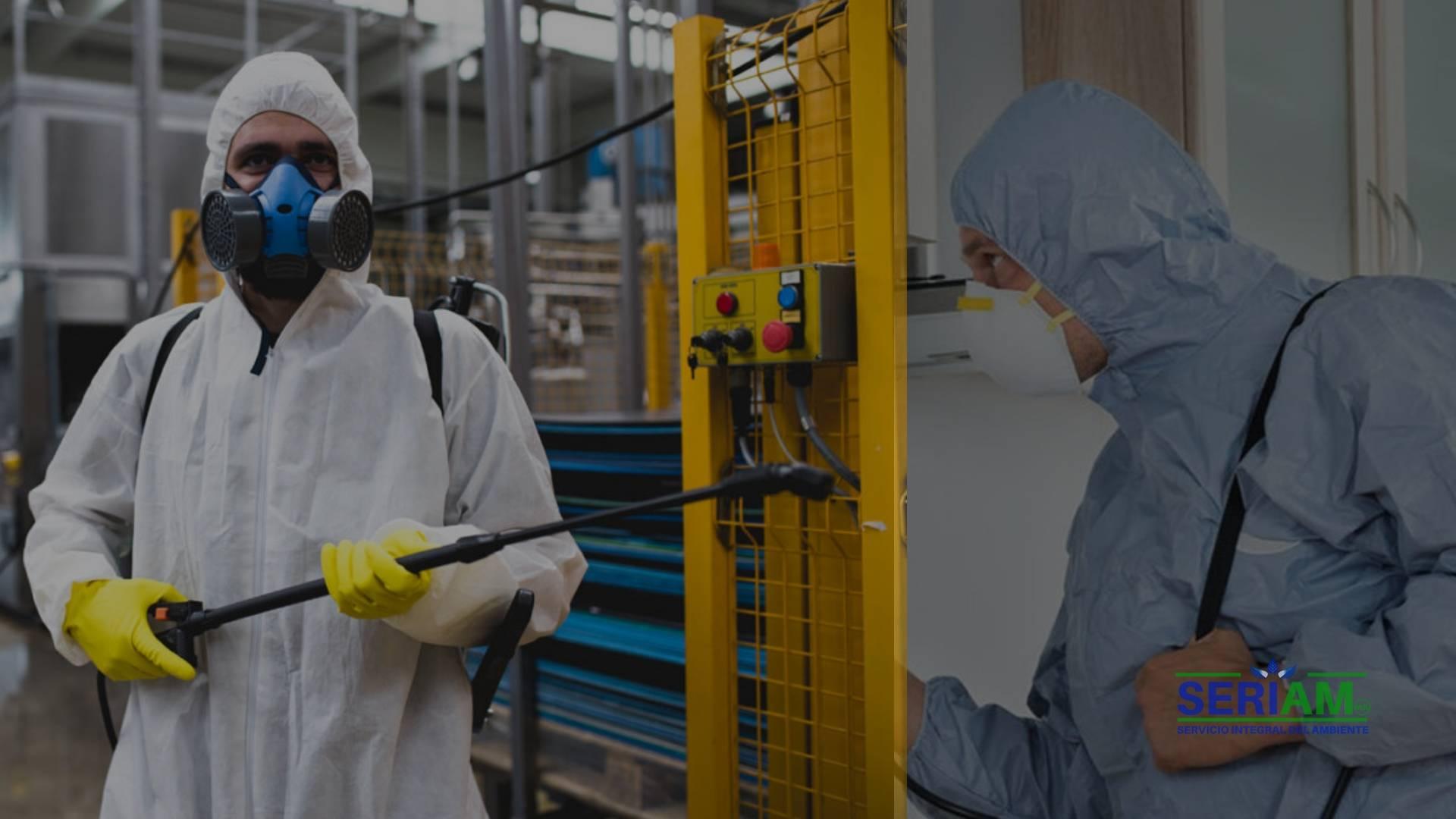 fumigacion-y-desinfeccion - fumigacion amonio cuaternario