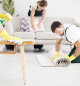 fumigacion-y-desinfeccion - fumigacion y desinfeccion de casas 333x360