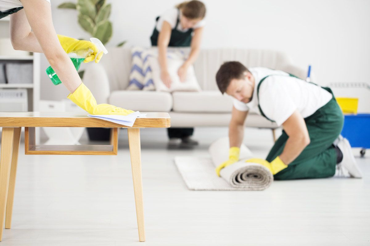 fumigacion-y-desinfeccion - fumigacion y desinfeccion de casas