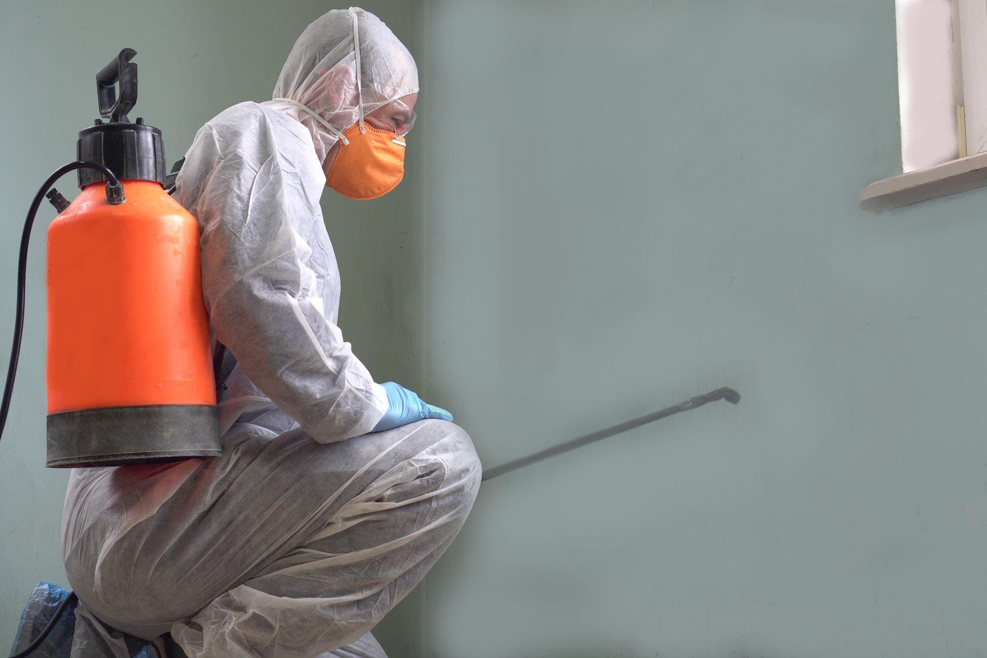 fumigacion-y-desinfeccion - fumigacion y desinfeccion peru