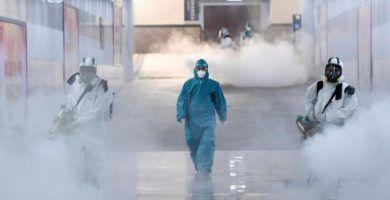 fumigacion-y-desinfeccion - informe de fumigacion y desinfeccion 390x200