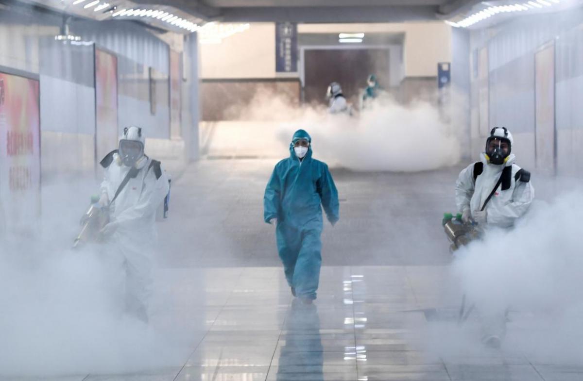 fumigacion-y-desinfeccion - informe de fumigacion y desinfeccion