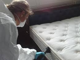 limpieza-de-colchones - limpieza de colchones para acaros