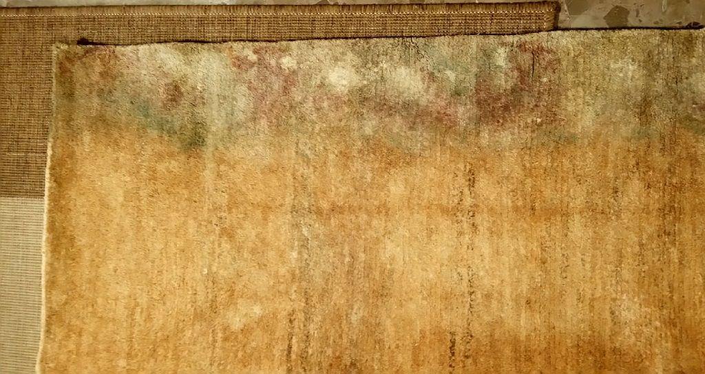 blog - como prevenir los danos causados e2808be2808bpor el agua en las alfombras