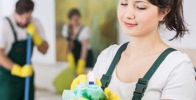 blog - la limpieza de la casa es nuestro negocio 390x200