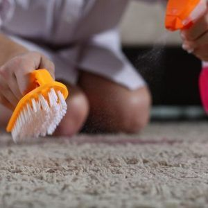 blog - productos de limpieza de alfombras no daninos 300x300