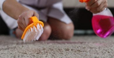 blog - productos de limpieza de alfombras no daninos 390x200