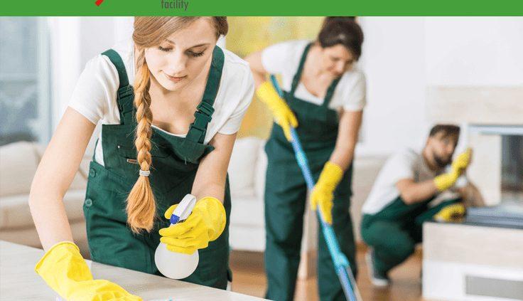 blog - servicios de limpieza lo que puede esperar de su ama de llaves